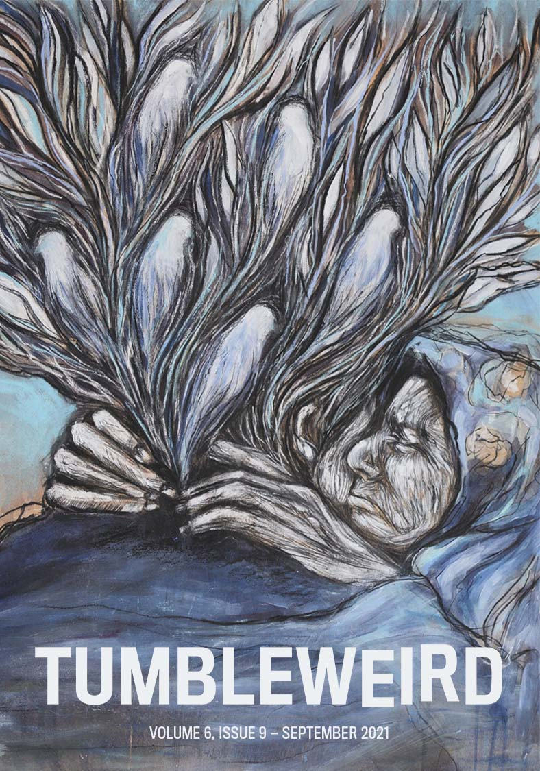 TUMBLEWEIRD volume 6, issue 9. Image shows an old woman with spirits, shaped a bit like birds, bursting out of her chest.