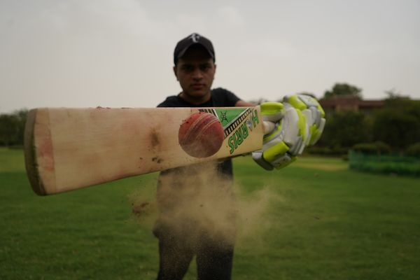 How cricket saved the day